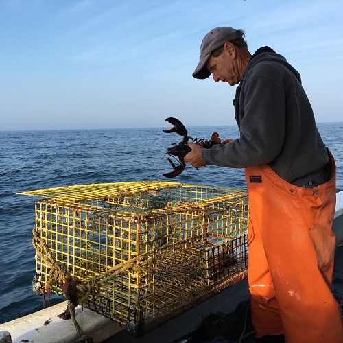 Wayne Iacono, a member of flotilla 9 fished for lobster off MV